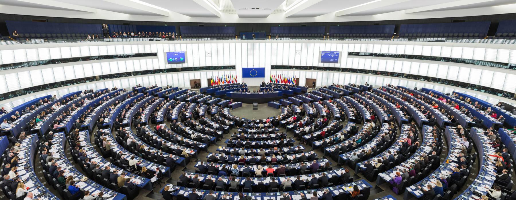 Nijs FNP - Europa - Parlemint